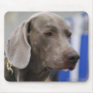 Cute Weimaraner  Mouse Pad