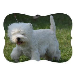 "Cute West Highland Terrier 5"" X 7"" Invitation Card"