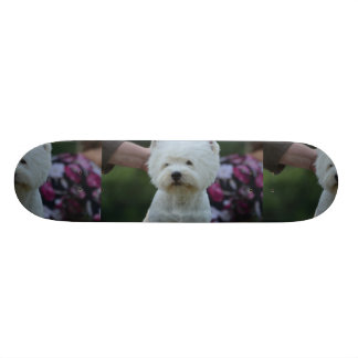 Cute West Highland White Terrier Skateboards