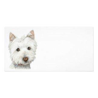 Cute Westie Dog Art Photo Card