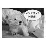Cute Westie dog greeting card