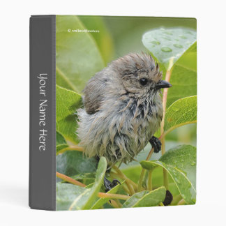 Cute Wet Wee Bushtit on the Laurel Mini Binder