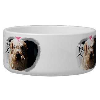 Cute Wheaton Terrier with heart pet food bowl