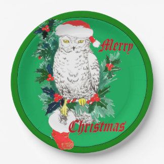 Cute Whimsical Christmas Owl Stocking Designed Paper Plate
