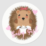 Cute Whimsy Woodland  Hedgehog Baby Girl Shower Classic Round Sticker