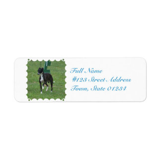 Cute Whippet Labels