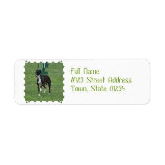 Cute Whippet Custom Return Address Label