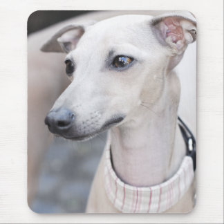 Cute Whippet Mouse Pad