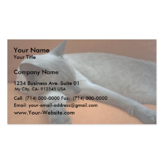 Cute White And Grey Aquiles Cat Sleep On Brown Coa Double-Sided Standard Business Cards (Pack Of 100)