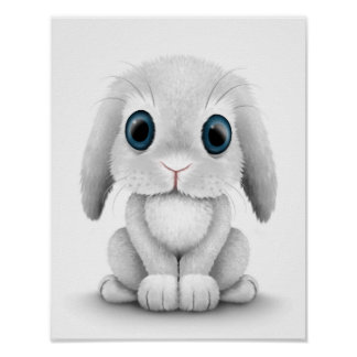 Cute White Baby Bunny Rabbit Poster