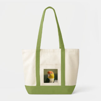 Cute White Bellied Caique Parrot Tote Bag