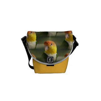 Cute White Bellied Caique Parrot Courier Bag