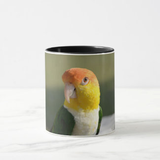 Cute White Bellied Caique Parrot Mug