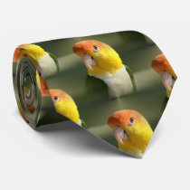 Cute White Bellied Caique Parrot Tie
