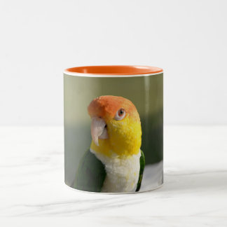 Cute White Bellied Caique Parrot Two-Tone Coffee Mug
