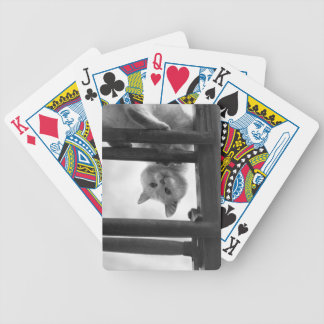 CUTE WHITE CAT HEAD UPSIDE DOWN ON LADDER BICYCLE PLAYING CARDS