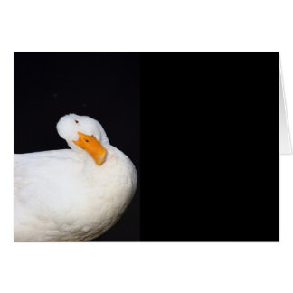 Cute White, Duck, blank note card