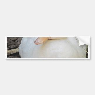 Cute White Duck Bumper Sticker