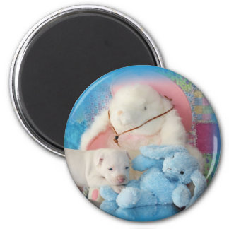 Cute White Easter Puppy Dog & Bunny Friends 2 Inch Round Magnet