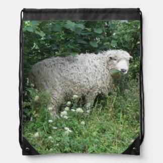 Cute White Fluffy Sheep Eating Backpack