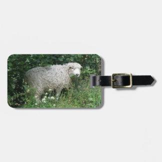 Cute White Fluffy Sheep Eating Custom Luggage Tag