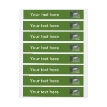 Cute White Fluffy Sheep Eating Customizable Labels