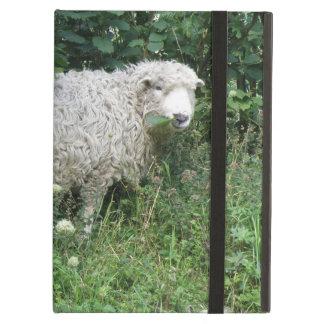 Cute White Fluffy Sheep Eating iPad Case