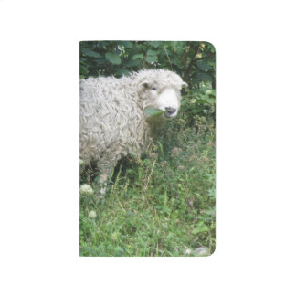 Cute White Fluffy Sheep Eating Lined Journal