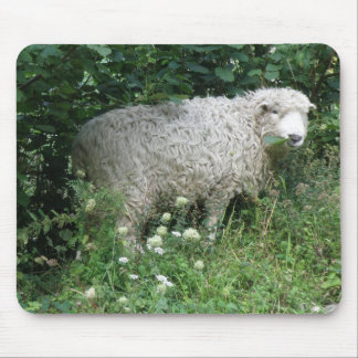 Cute White Fluffy Sheep Eating Mousepad