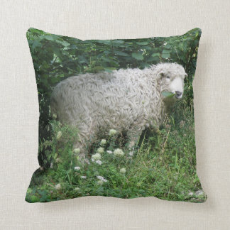 Cute White Fluffy Sheep Eating Pillow