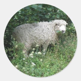 Cute White Fluffy Sheep Eating Sticker
