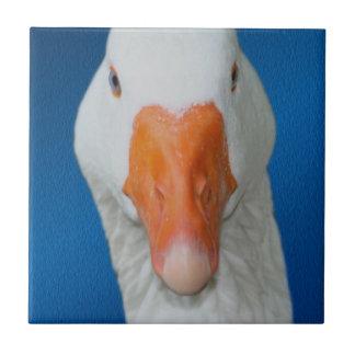 Cute White Goose Nature Ceramic Tile