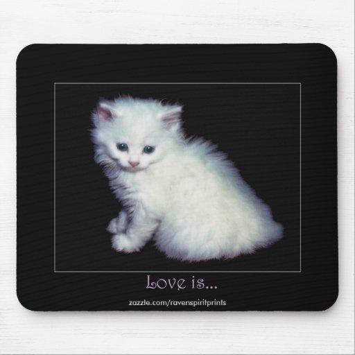 Cute White Kitten Art Mouse Pad Zazzle