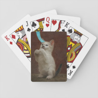 Cute white kitten playing with blue ribbon playing cards