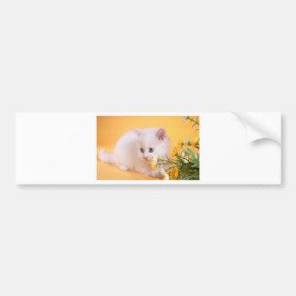 Cute White Kitten Plays With Flowers Bumper Sticker