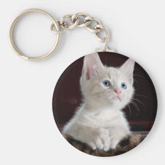 Cute white kitten portrait basic round button keychain