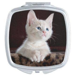 Cute white kitten portrait compact mirror