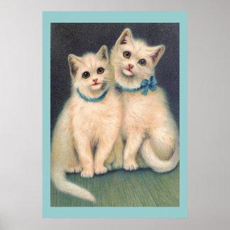 Cute White Kittens Print