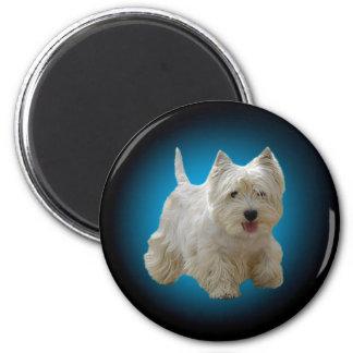 Cute White Maltese Dog Magnet
