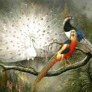 Cute Pheasant Home Décor, Furnishings & Pet Supplies | Zazzle