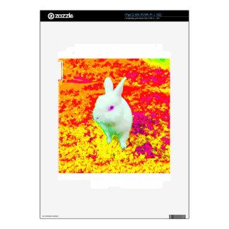 Cute White Pet Rabbit Pink Eyes iPad 2 Skin