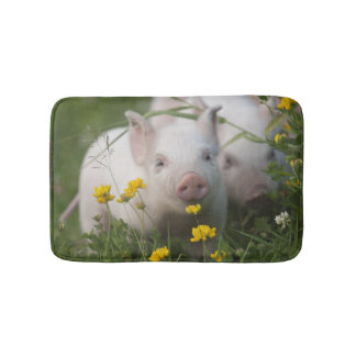 Cute White Piglet in Field of Yellow Flowers Bathroom Mat