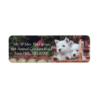 Cute White Puppies Return Address Mailing Stickers Label