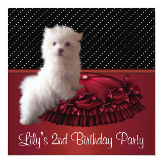 Cute White Puppy Birthday Party Invitations