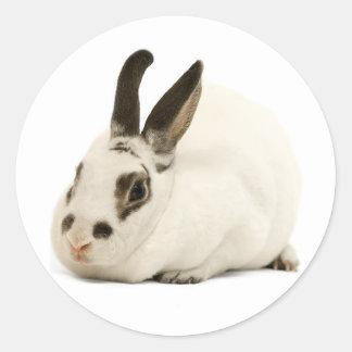 Cute White Rabbit Sticker