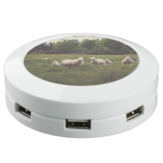 Cute White Sheep & Lambs in Field Trees Rocks USB Charging Station