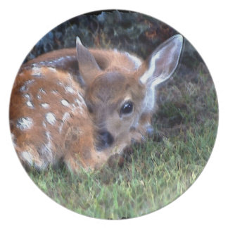 Cute White-Tail Deer Fawn Wildlife Art Plate