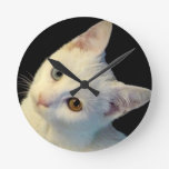 Cute White Turkish Van Kitten Clock