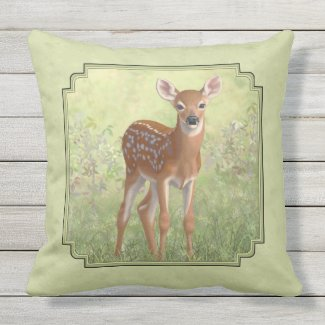 Cute Whitetail Fawn