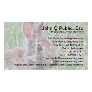 Cute Wild Bunny Rabbit Wildflowers Contact Cards